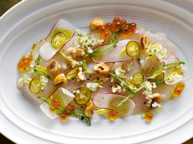 DTLA_LA_Chapter_Amberjack_Crudo_Dylan_James_Ho