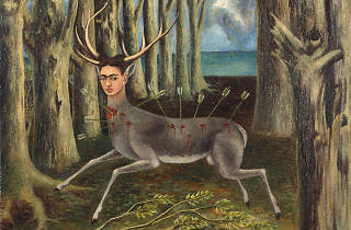 """Unbound: Contemporary Art After Frida Kahlo"""