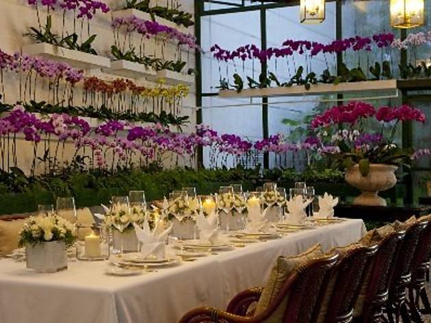 Orchid Conservatory Valentine�s Day dinner