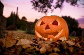 SKYY-RY Halloween Bus Tour