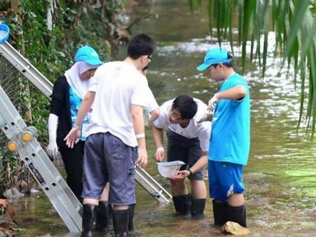 River Scientist Programme