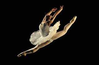 To Dream a Ballerina�s Dream