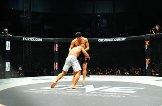 ONE Fighting Championship 2013