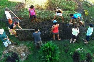 Building a School Garden: Practical Workshop