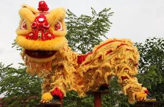 World champion lion dance at Tom, Dick & Harry's