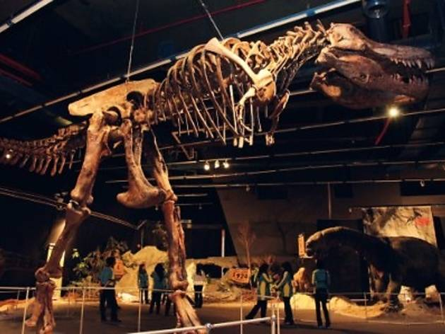 'Age of the Giants' Dinosaur Exhibition
