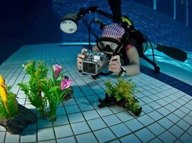 Seamonkey Dive Centre