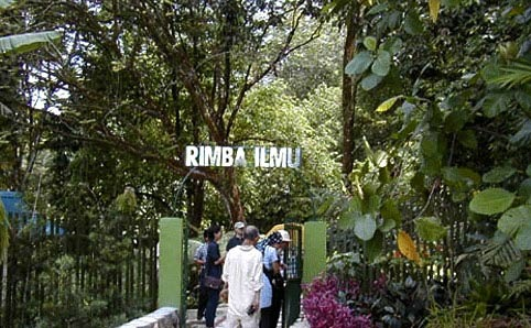 University Malaya Rimba Ilmu