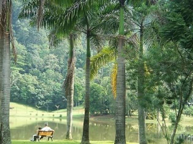 Forest Research Institute Malaysia (FRIM)