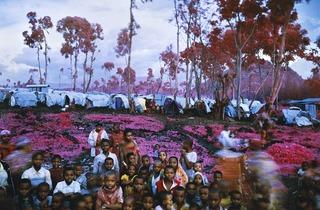 Richard Mosse ('Lost Fun Zone', 2012)