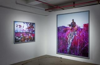 Richard Mosse (Installation view of 'The Enclave', 2014)