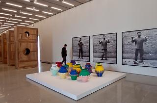 Pérez Art Museum (Photograph: Patrick Farrell)