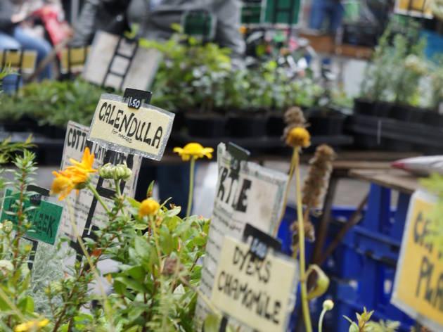 Walthamstow Farmers Market