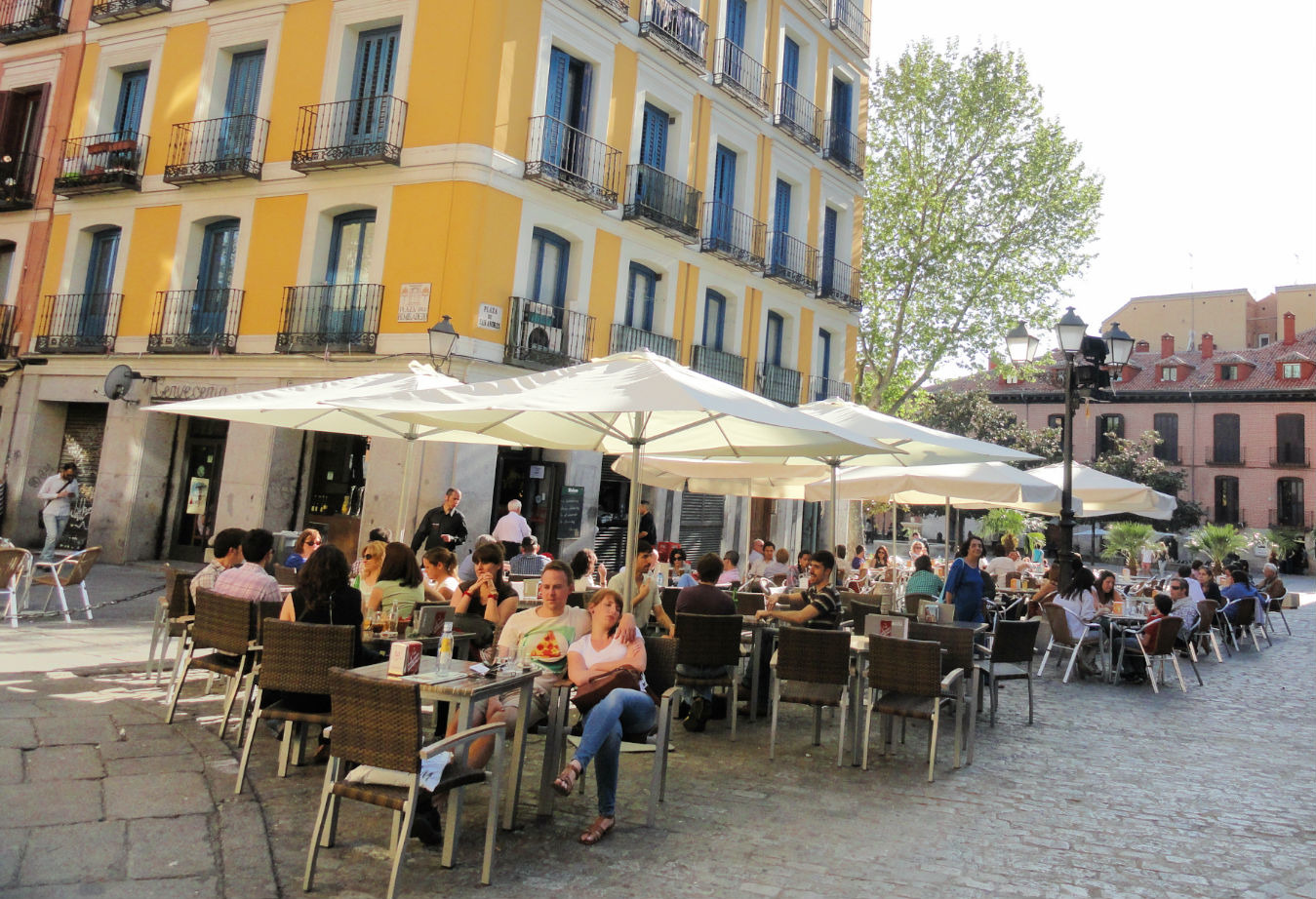 Madrid's best cheap eats