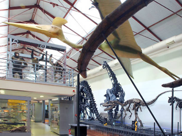 National Museum of Natural Sciences
