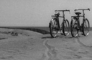 Printemps tardif (1949)