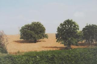 Gerhard Richter ('Bäume im Feld', 1988 )