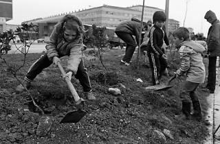 Primavera verda: Soberania alimentària, una alternativa al canvi climàtic