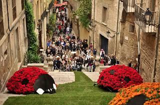 Escales de Sant Martí. Girona, Temps de Flors