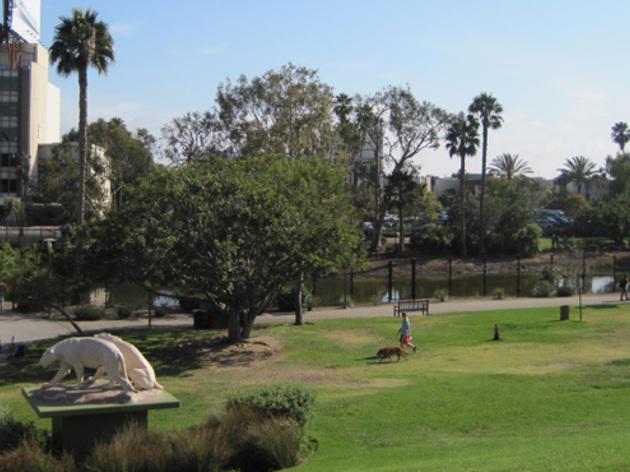 Hancock Park La Brea