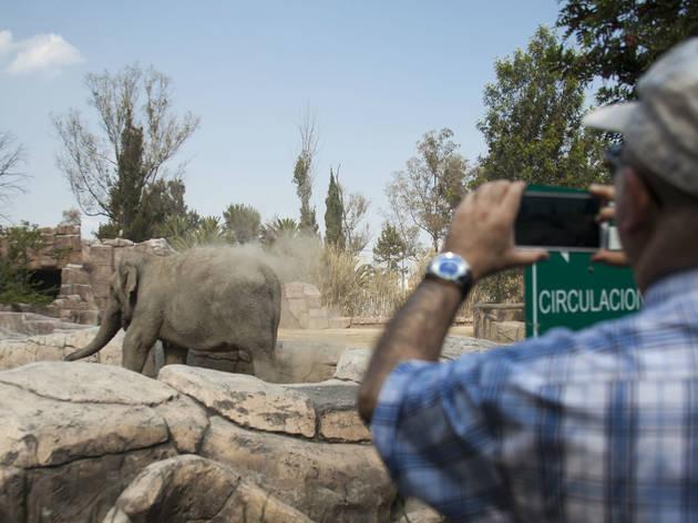 Zoológico de San Juan de Aragón
