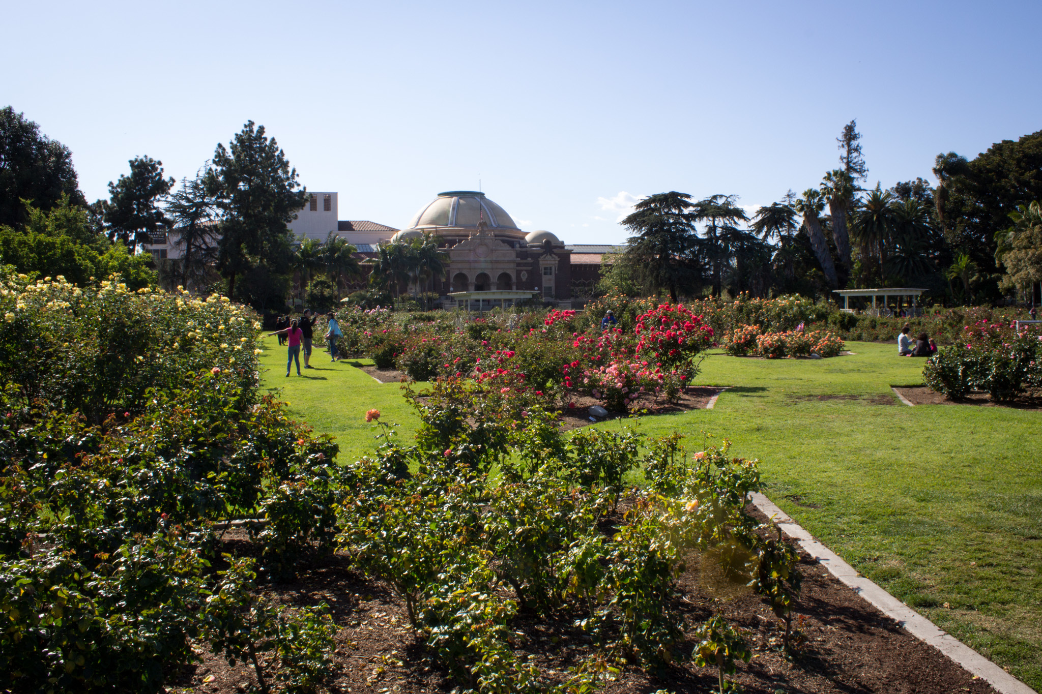 The Best Botanical Gardens And Hidden Oases In Los Angeles