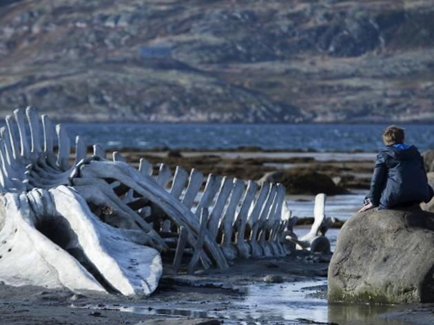 'Leviathan' (d'Andrey Zvyagintsev (DR))