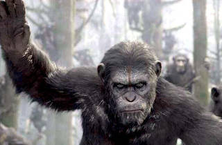 Summer Classic Film Series: Planet of the Apes