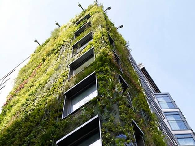 Grow Your Own Living Wall with The Athenaeum Hotel