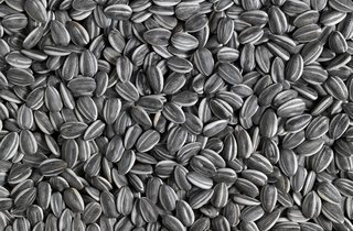 Ai Weiwei ('Sunflower Seeds', 2010)