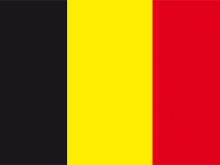 Frites belges • De Clercq