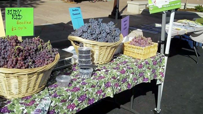 Best Farmers' Markets in Los Angeles for Fresh Produce