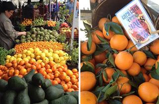 (Photograph Courtesy Mar Vista Farmers' Market)