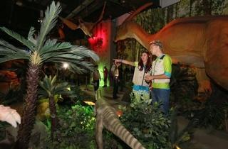 Dinoscovery by Dinosaurs Live!