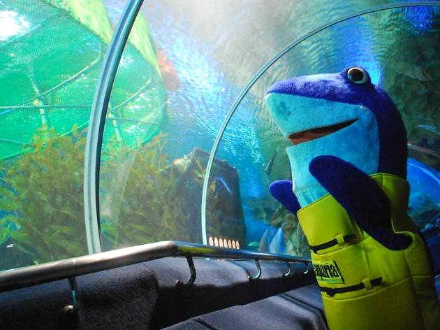 Hang out with the fishes at Aquaria KLCC