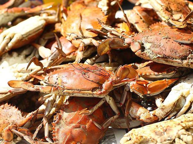 Crab Cake LA