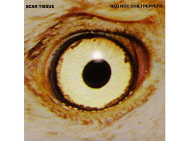 """Scar Tissue"" by Red Hot Chili Peppers"