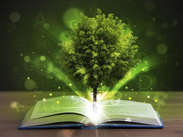 Libros verdes: cómo reducir el impacto ambiental de la edición