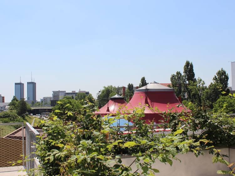 Les Sardignac sur le toit