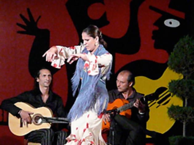 Flamenco Experience