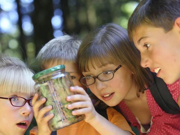 Actividades para niños en Polanco