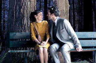 Mood Indigo screening