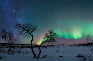 (© Rune Johan Engeboe)