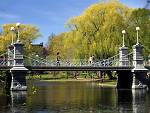 50 things to do in Boston: The Public Garden