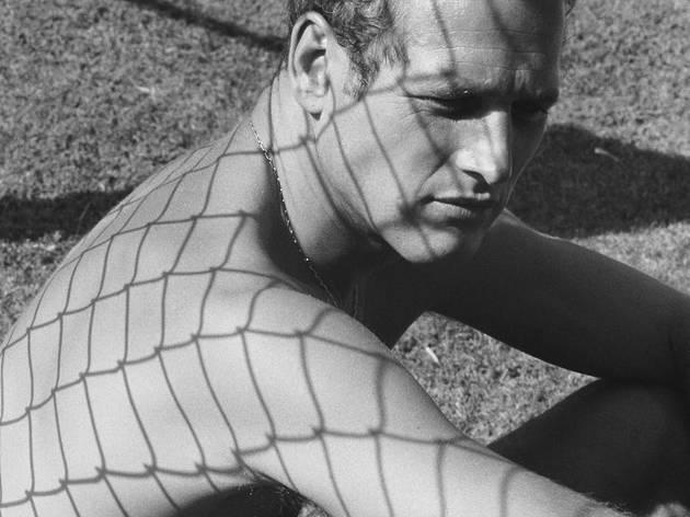 Dennis Hopper ('Paul Newman', 1964)