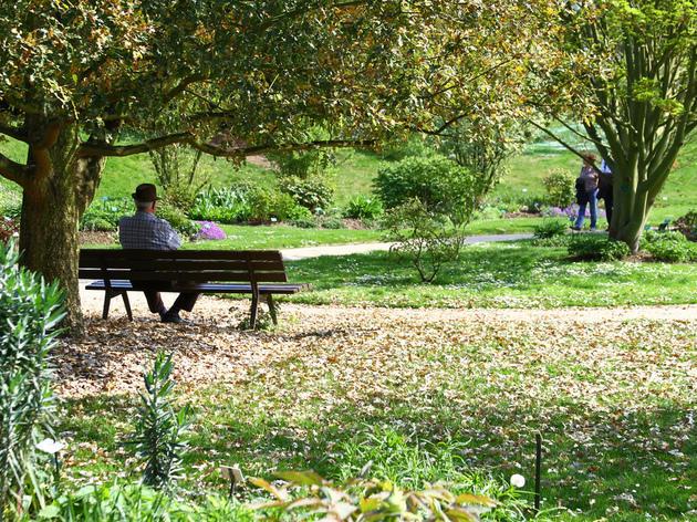 L'escapade musicale •Parc Floral