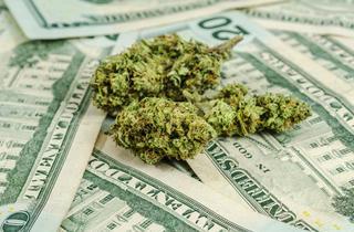 Chicago Ideas Week: America's Budding Marijuana Business