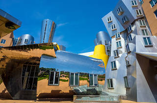 Kendall Square neighborhood guide: Ray and Maria Stata Center (MIT)