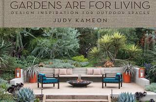 Judy Kameon book signing