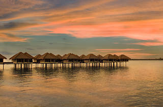 Avani Sepang Goldcoast Resort New Year's Eve special